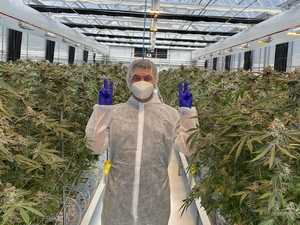 Byron-based medical cannabis group lands $92 million deal