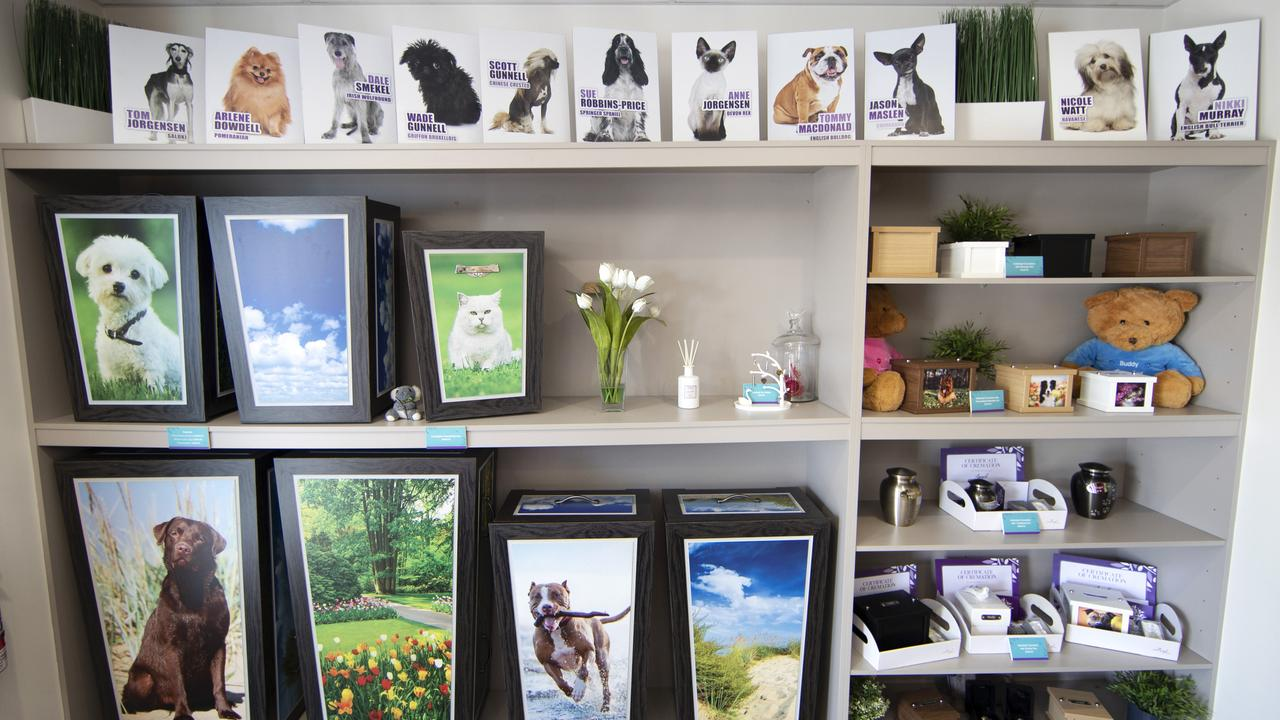 Pet Angel provides a range of final resting places for beloved pets including urns, coffins and teddy bears. Picture: NIGEL HALLETT