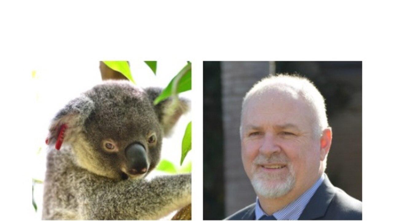 Gympie council CEO Shane Gray