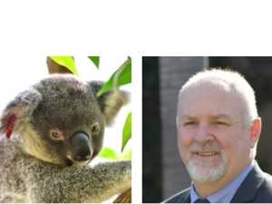 Wildlife rescue group rejects council green levy claim