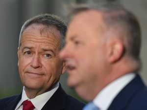 Outspoken MP's backhander to Albo