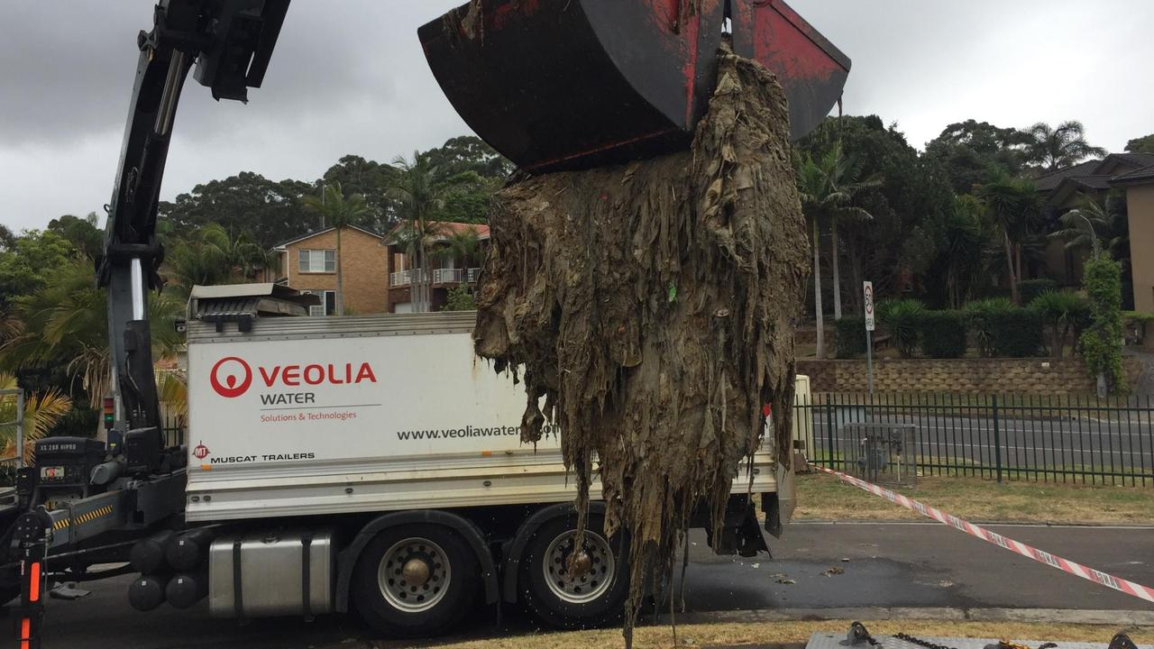 A massive fatberg being removed in Sydney last year.