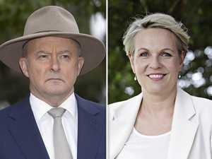 Five Labor leadership hopefuls circle Albanese