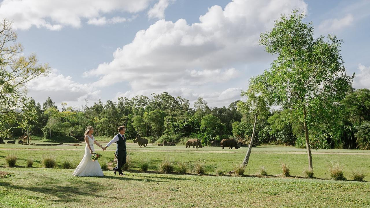Australia Zoo will cater for small elopements to larger weddings, as well as proposals with private animal encounters.