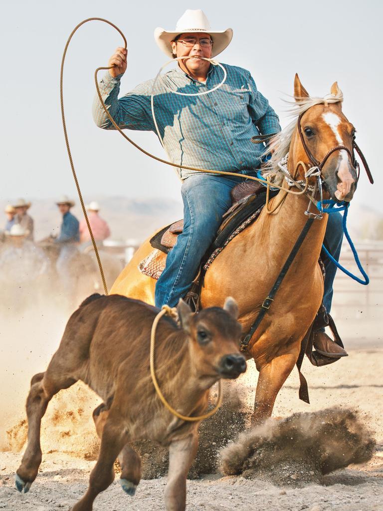 Cowboy moving at full speed roping a calf at a summer rodeo in Utah.