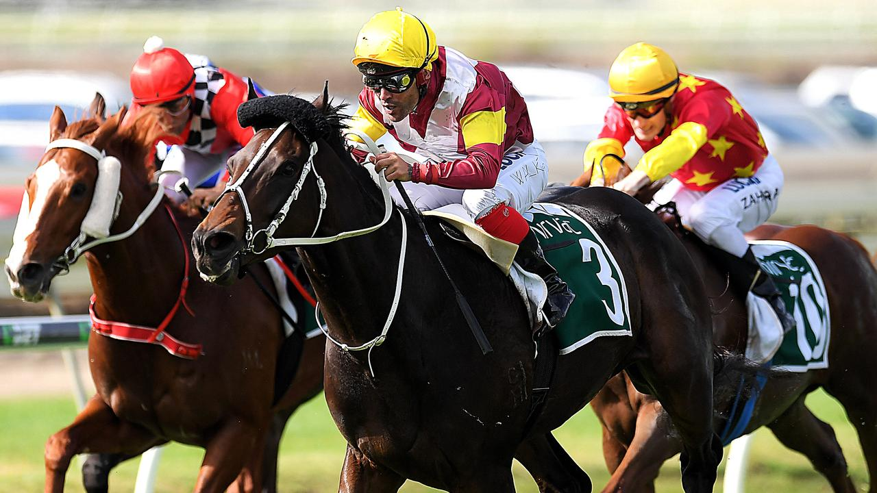 Find out why racing editor Nathan Exelby reckons a horse with a poor win strike rate is a good gamble at the Sunshine Coast.