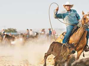 Bid to ban 'brutal' calf roping at rodeos
