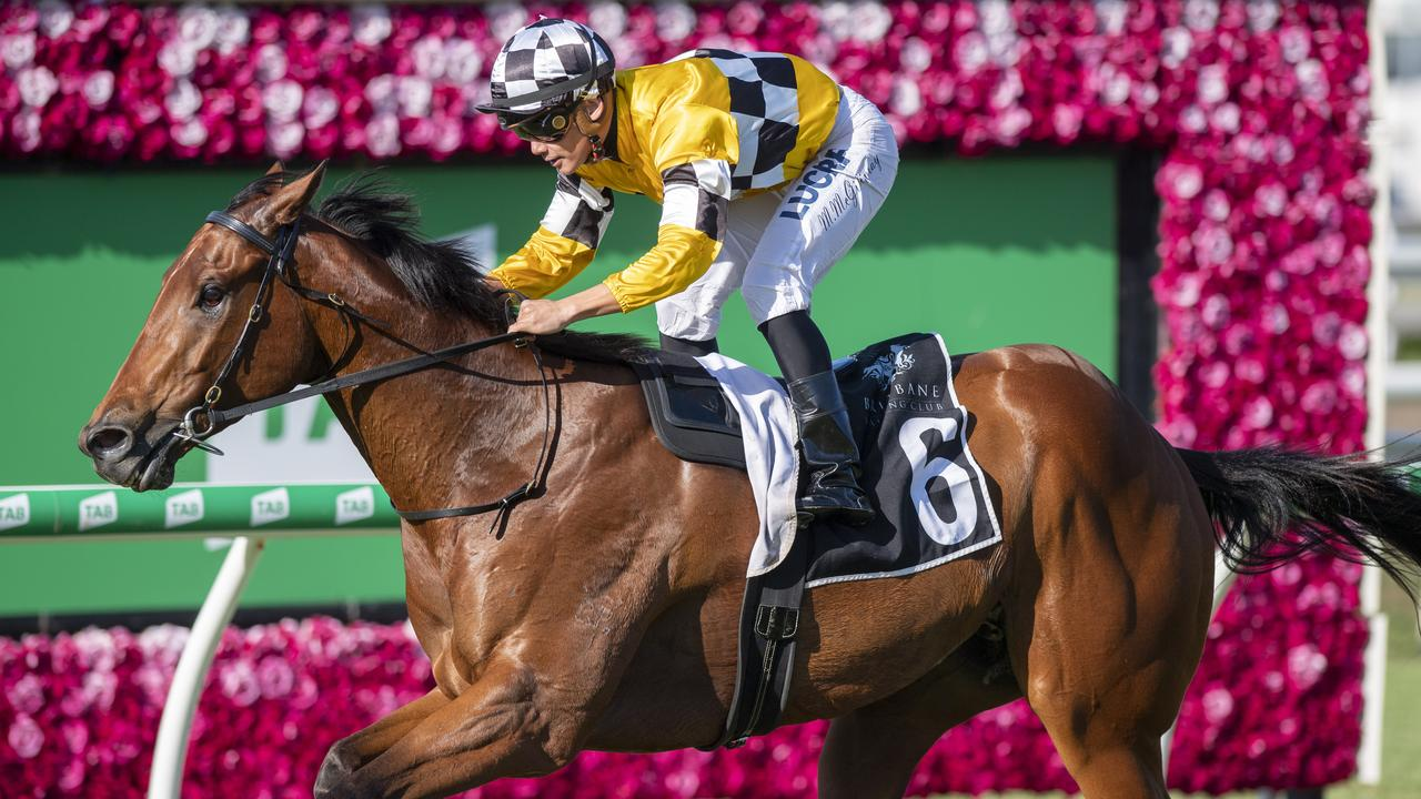Tambo's Mate returns to his home track on Saturday.