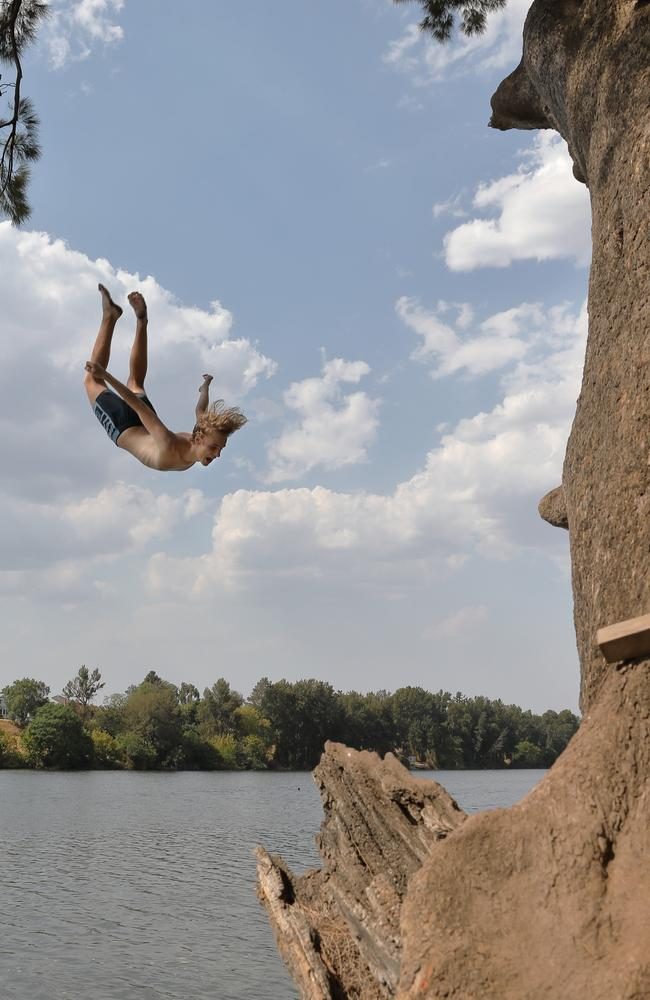 A swimmer does flip off a tree into the Nepean River near Penrith on a steaming January day. Picture: Damian Shaw