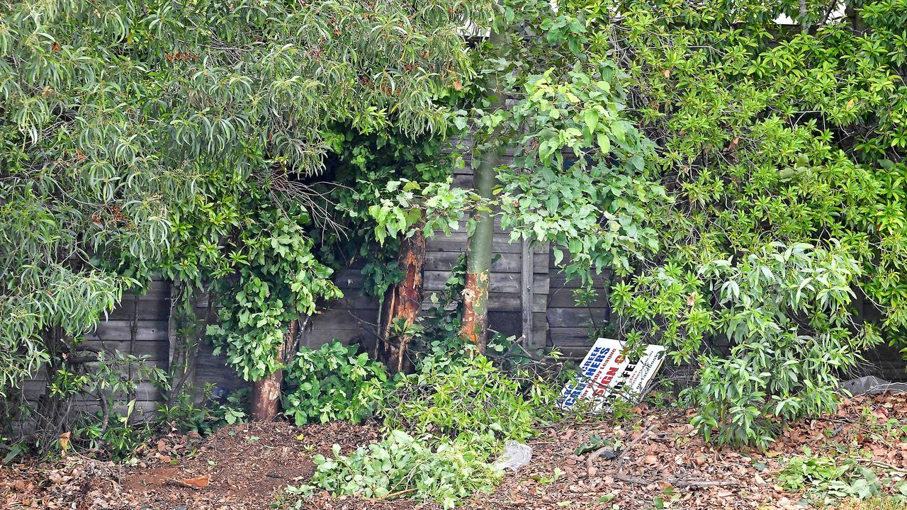 Five teenagers were hospitalised after a car crashed into a tree. Picture: John Gass