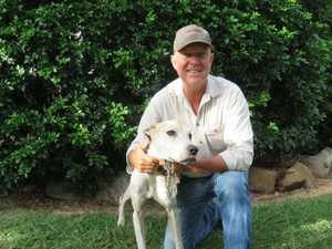 25 days in the wild: Dog found after owner's miracle