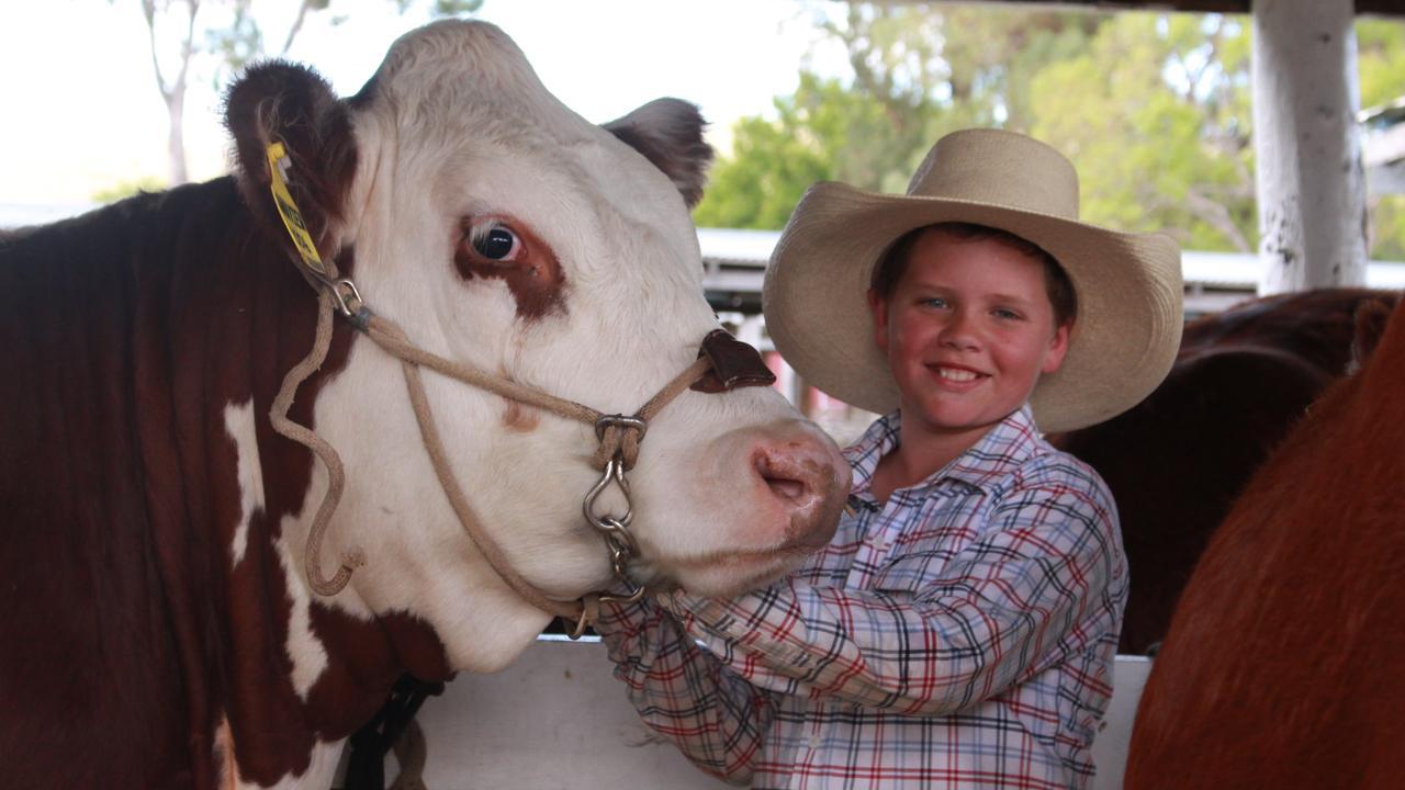 AG CELEBRATION: Freestone cattleman Riley Bacon enjoyed roaring success at the Allora Show 2019.