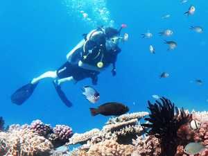 Major reef tourism operator shedding staff