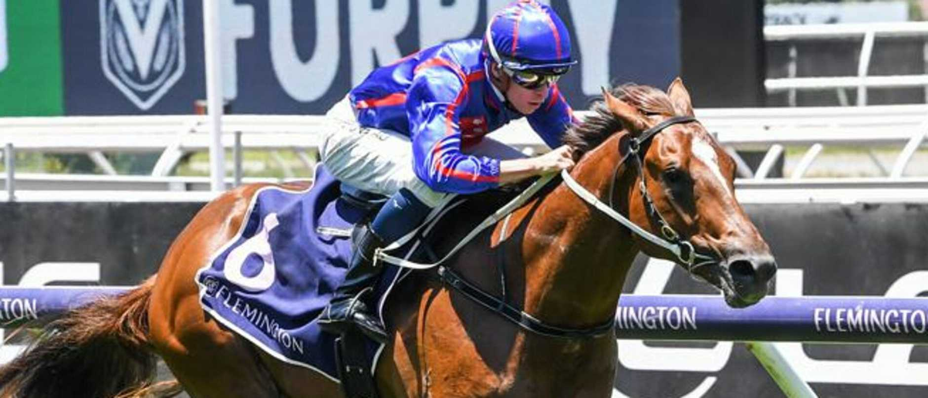 Newgate Farm boss Henry Field hopes to unearth another potential stallion prospect as he applies his strategy to stay at the forefront of thoroughbred breeding.
