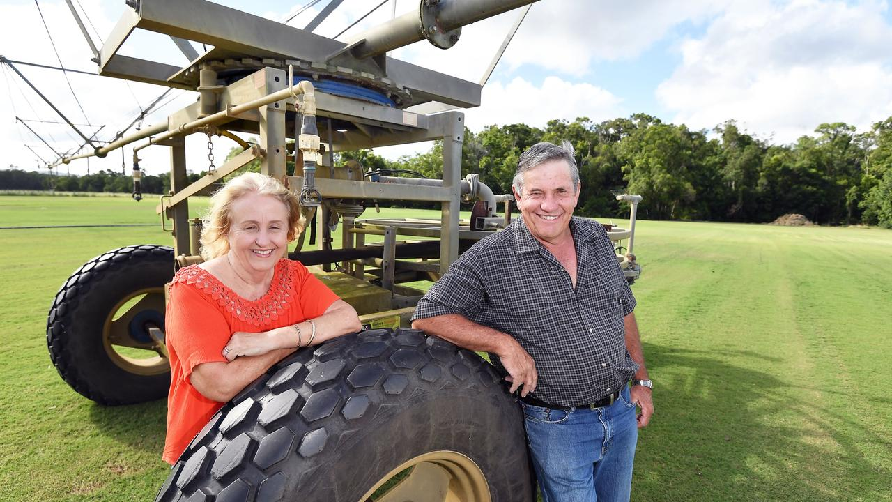 Lyn and Paul Thomas, owners of Sunshine Coast Turf, are looking to ease their workload with retirement looming, with Bendles Farm at Glenview up for sale. Picture: Patrick Woods.