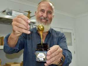 Buzz about manuka honey business on Northern Rivers