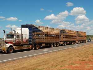 'Shot at, maimed': Horror life of truckies