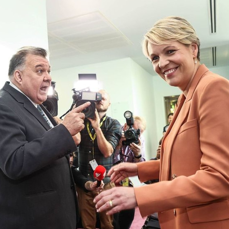 Labor MP Tanya Plibersek and Liberal MP Craig Kelly clashed in Parliament House's press gallery.