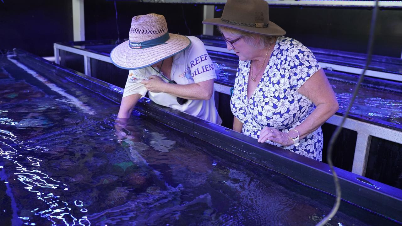 Capricornia MP Michelle Landry with an Ultra Coral employee. Picture: supplied