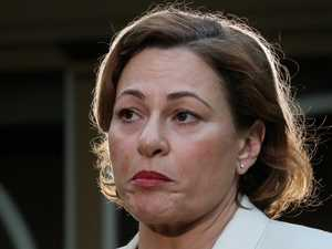 Jackie Trad preselection rumours news to Albo