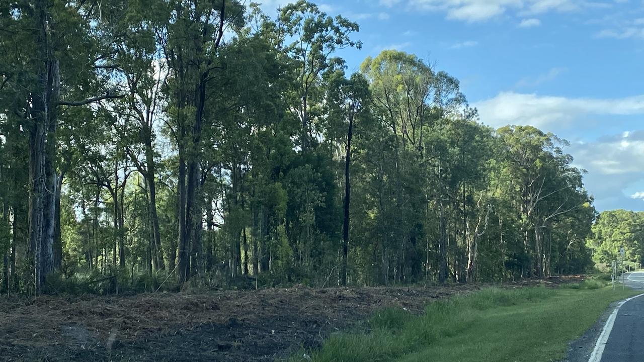 Vegetation clearing has been undertaken in preparation of safety upgrade works on Steve Irwin Way.