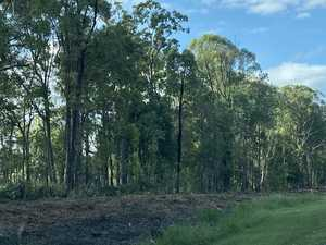 Trees cleared as safety upgrades start on busy road