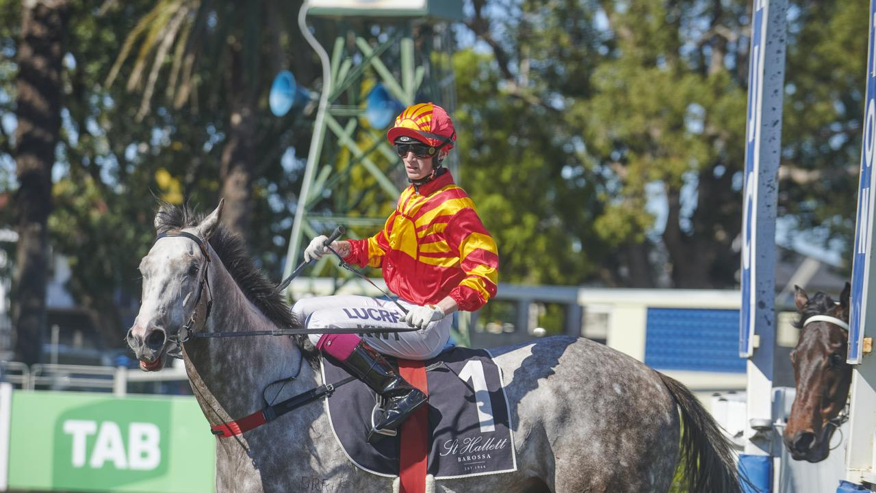Kyle Wilson-Taylor rides Pace Stick to an easy win in Race 2 a the Clarence River Jockey CLub