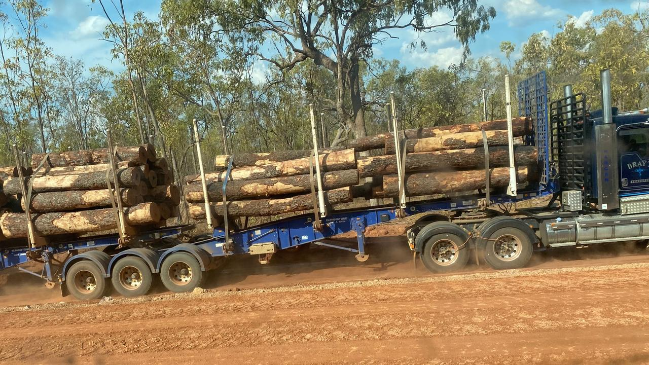 Ironwood trees being transported along the Peninsula Development Road
