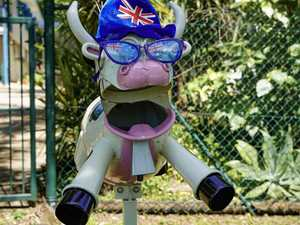 Do you know who owns Mackay's most creative mailbox?