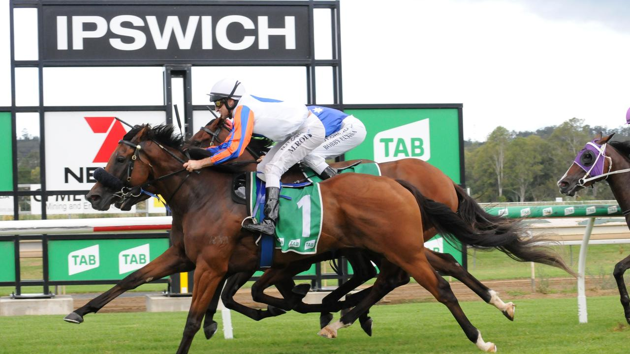 Ipswich race winner Hail Manhatten ridden by Michael Rodd and trained by Peter and Will Hulbert. Picture: Claire Power