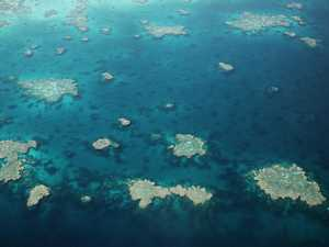 REVEALED: Fitzroy flunks Barrier Reef report card