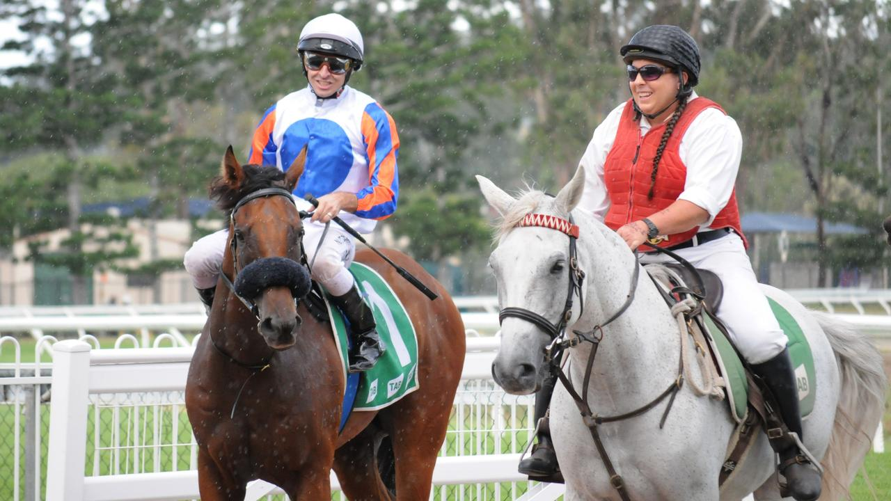 Ipswich race winner Hail Manhatten, ridden by Michael Rodd and trained by Peter and Will Hulbert. Picture: Claire Power
