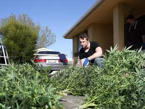 REVEALED: Numbers of Coffs residents getting done for dope