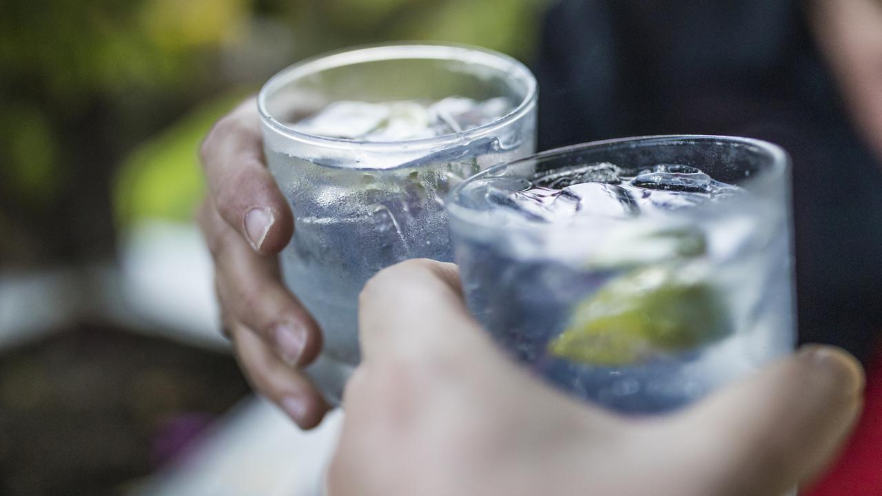 CHEERS TO THAT: The Southern Downs could soon welcome its newest gin distillery and cellar door experience. Picture: Instants / iStock