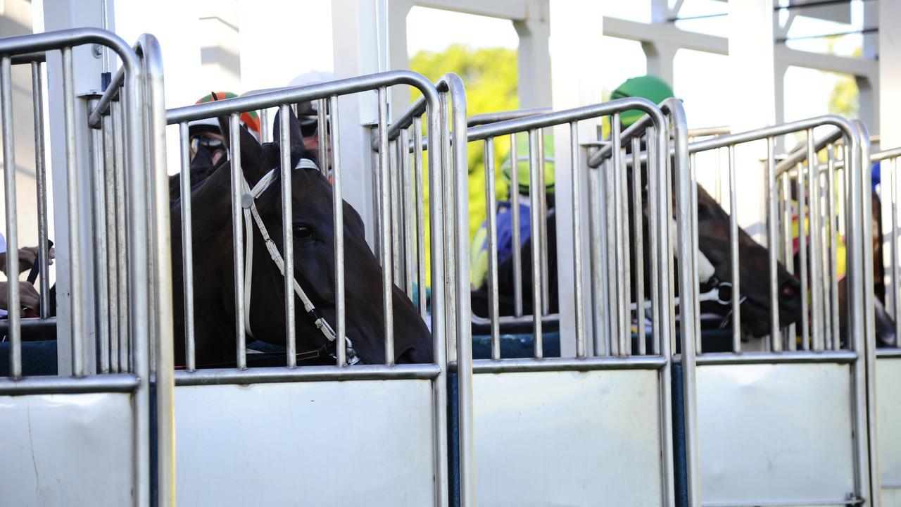 Racing action returns to the Clarence River Jockey Club tomorrow. Photo JoJo Newby / The Daily Examiner