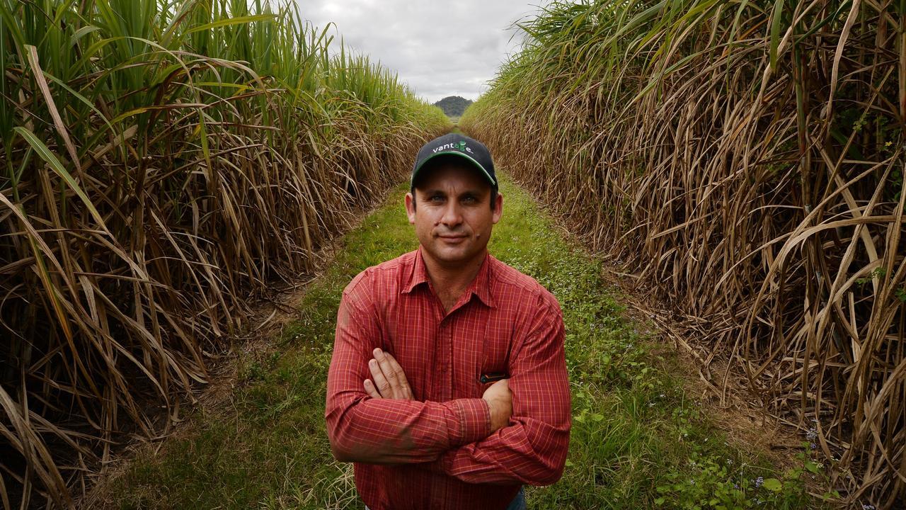 Mackay region cane grower Joseph Borg.