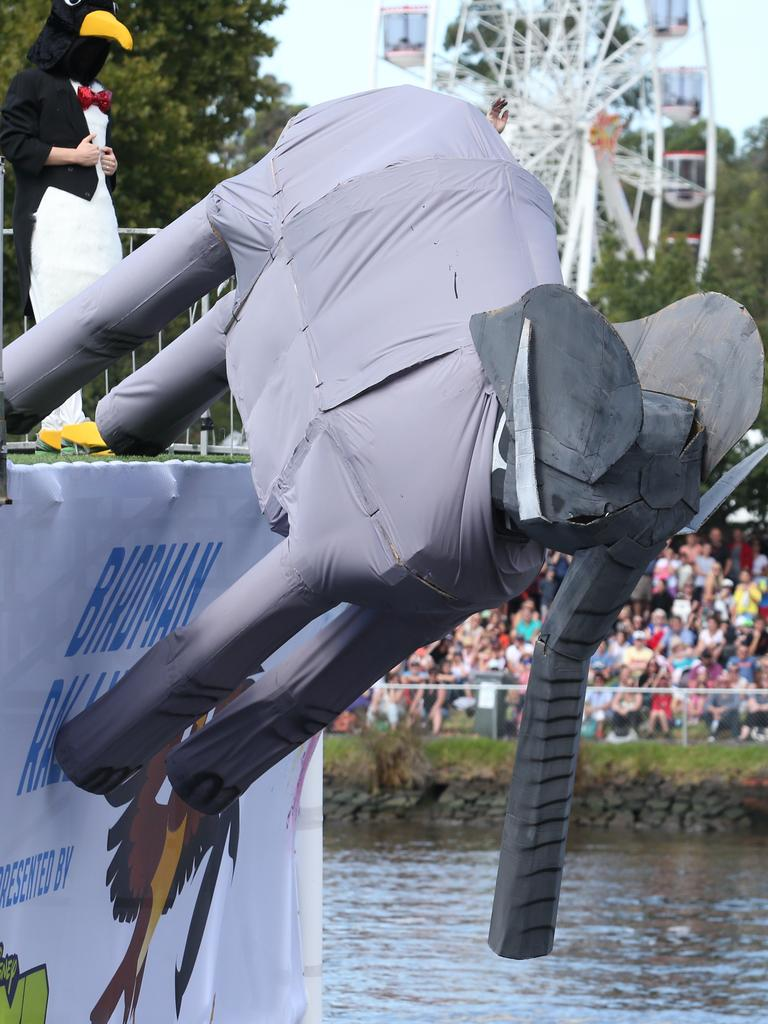 The Flying Elephant takes part in the Birdman Rally. Picture: David Crosling