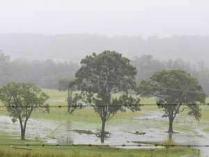 Coffs Coast cops more rain as Bellinger goes into flood