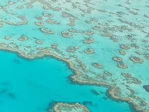 Farmers, graziers 'demonised' as reef killers, says Senator