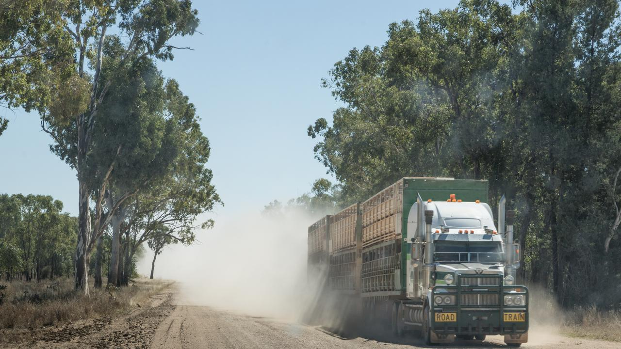 Semi-trailer road train truck carrying cattle driving on dusty unsealed outback road Australia