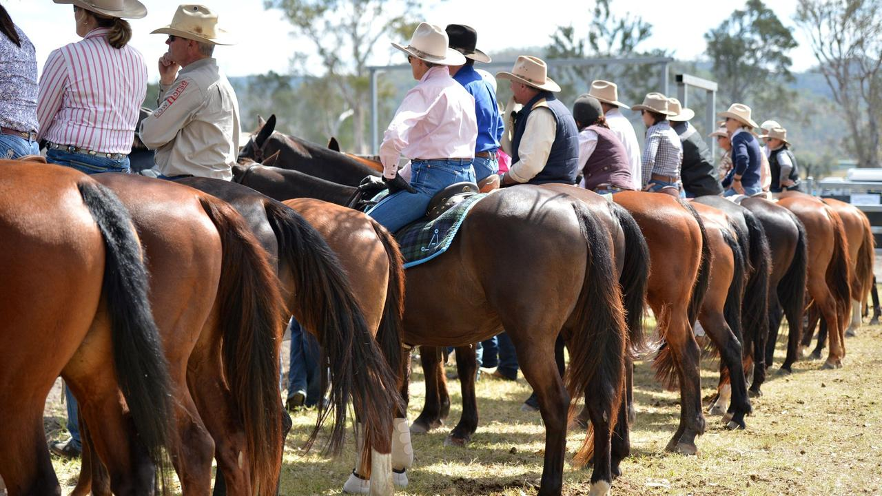 The Biggenden Charity Campdraft will ride into Teebar next month. Photo Tanya Easterby