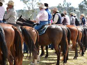 Small country town saddling up for campdraft event