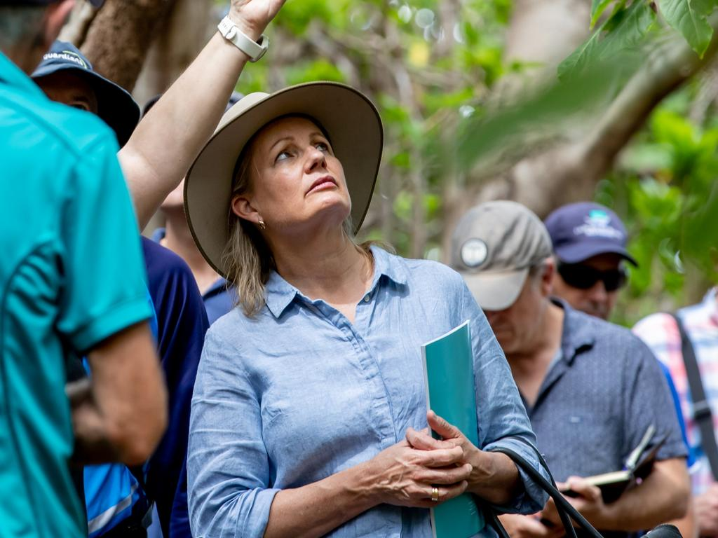 Environment Minister Sussan Ley ordered a review of export permits for wildlife. Picture: Luke Marsden