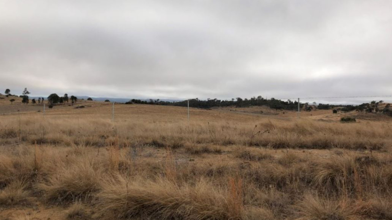 The site of a planned solar farm 2km east of Tenterfield.