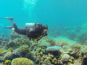 Keppel business to help keep Great Barrier Reef healthy
