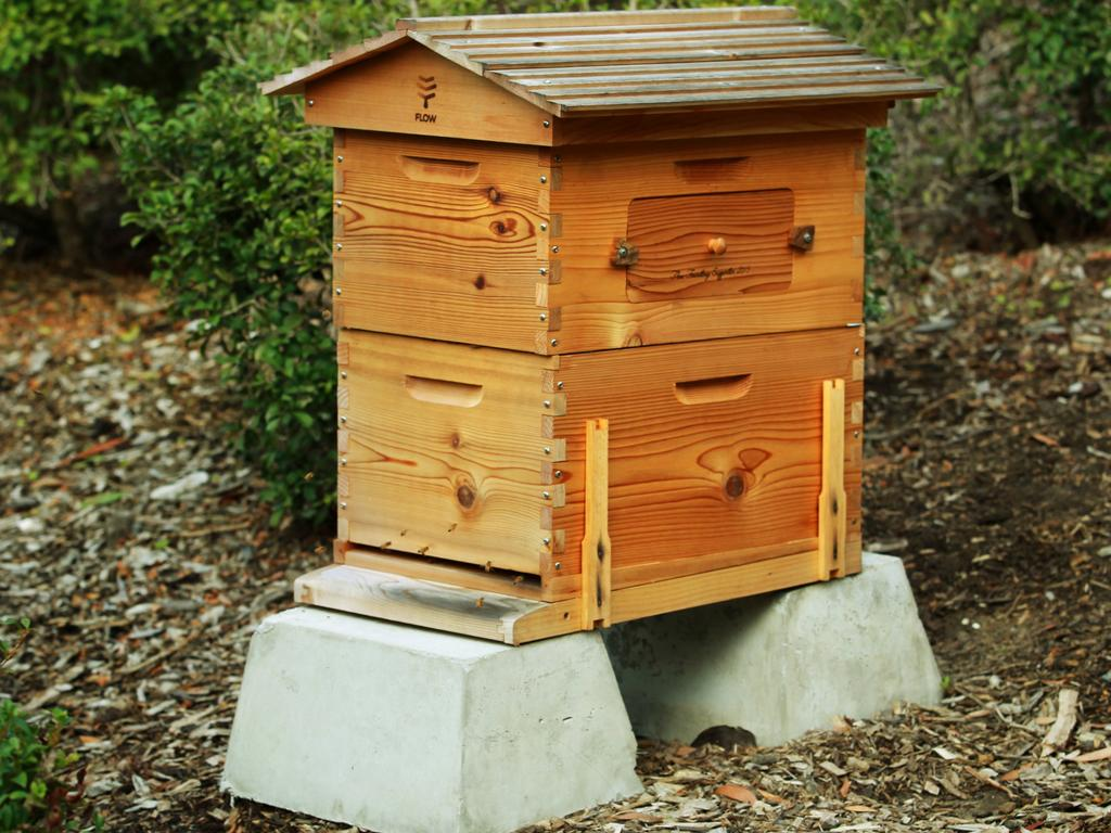 Beekeeping, food canning and archery are all skills preppers are learning to prepare. Picture: iStock