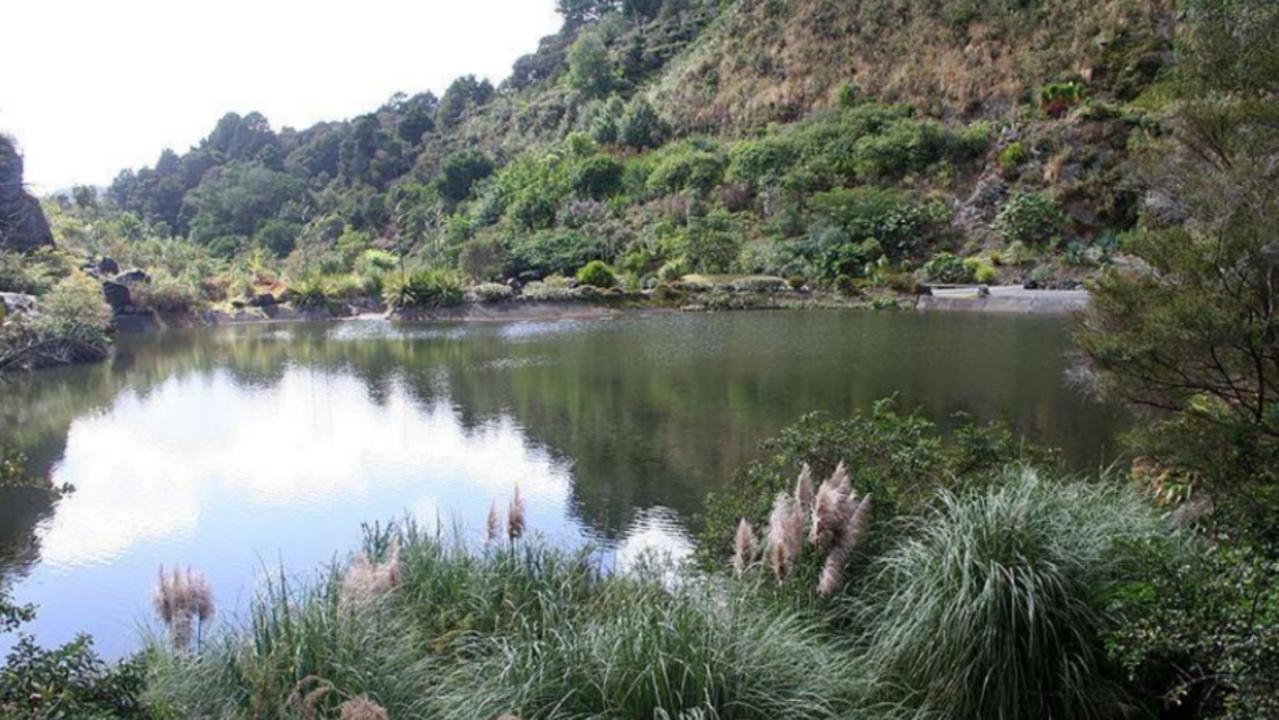 Other rehabilitated quarry sites. Whangarei Gardens.