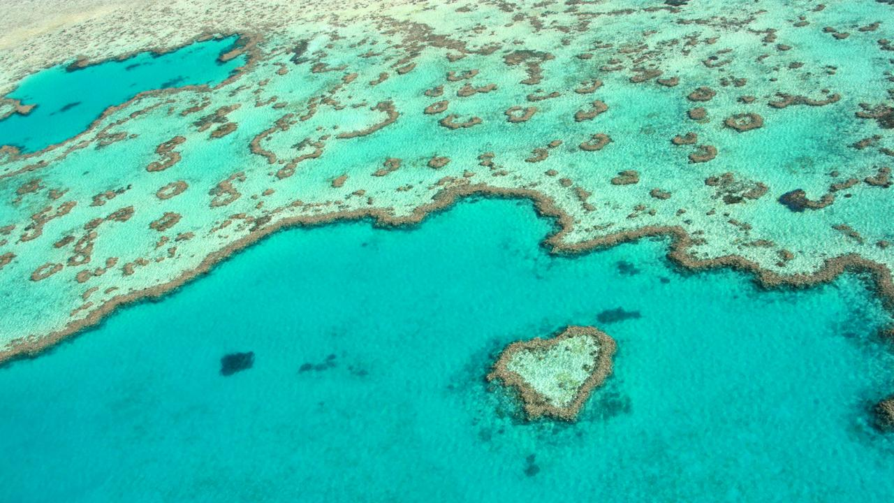 Community members can take action on a local level to help protect the Great Barrier Reef. Picture: Tourism Whitsundays
