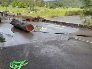 Removing logs from Tallawudjah Creek Bridge