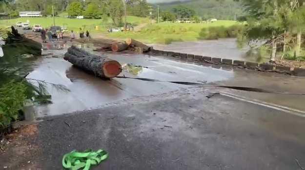 Removing logs from Tallawudjah Creek Bridge